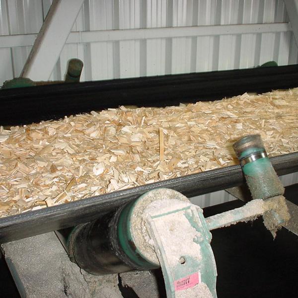 Oil Resistant Correia Transportadora